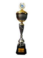 https://www.fkzeljeznicarbl.com/wp-content/uploads/2018/12/trofej9.png